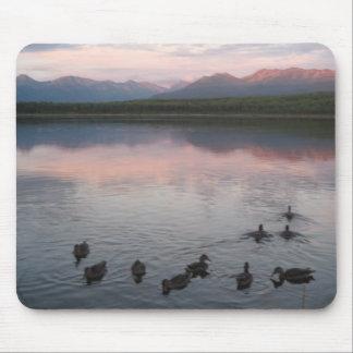 Ducks on lake & Chugach Mountains Alaska Mouse Pad