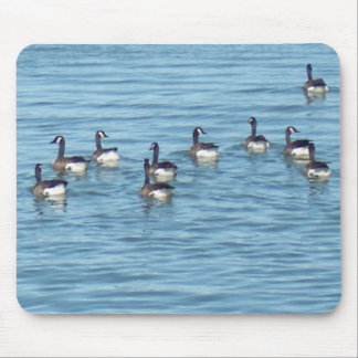 Ducks on the pond mouse pad