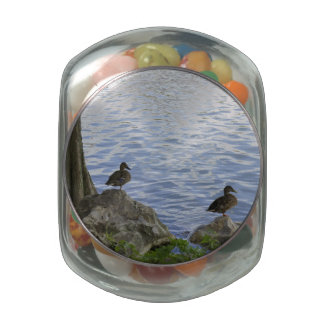 Ducks on Watch Jelly Belly Candy Jars