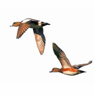 Ducks Ornament