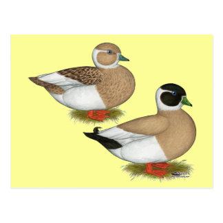 Ducks:  Penciled Calls Postcard