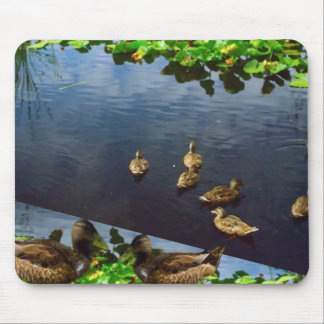 DUCKS pond nature printed gifts KIDS love bird pet Mouse Pad