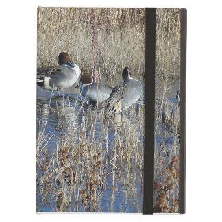 Ducks Powis iCase iPad Covers