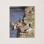 Ducks Puzzle