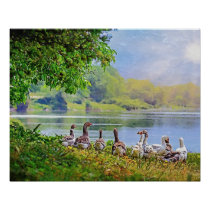 Ducks, river art wall for decorate. poster