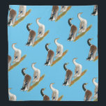 """Ducks:  Silver Appleyard Bandana<br><div class=""""desc"""">The Silver Appleyard is a good sized production duck with very pretty coloring.</div>"""