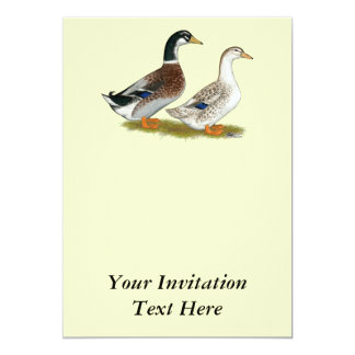 Ducks:  Silver Appleyard Card