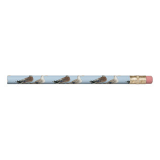 Ducks:  Silver Appleyard Pencil