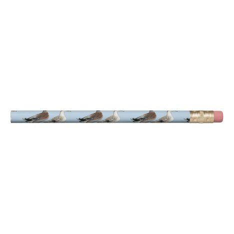 Ducks:  Silver Appleyard Pencil