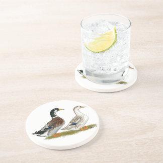 Ducks:  Silver Appleyard Sandstone Coaster