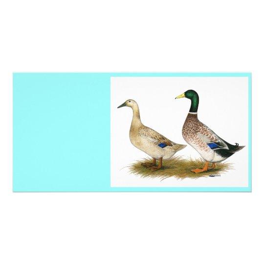 Ducks:  Silver Welsh Harlequin Card