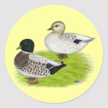 Ducks:  Snowy Calls Classic Round Sticker