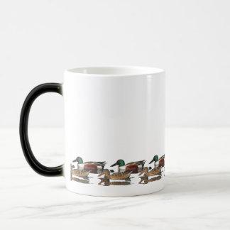Ducks swim around your Mug