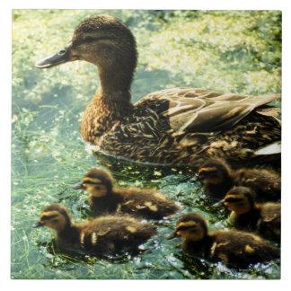 ducks ceramic tile