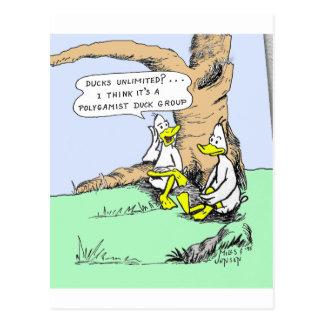 Ducks Unlimited Postcard