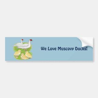Ducks White Muscovy Family Bumper Sticker