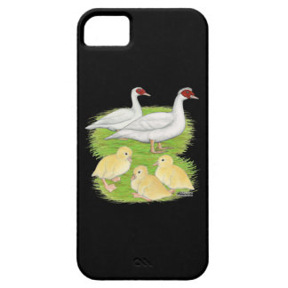Ducks White Muscovy Family iPhone 5 Covers