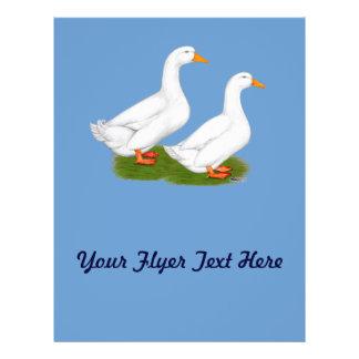 Ducks:  White Pekins Flyer