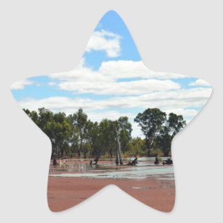 Duckweed_On_The_River_Murray,_ Star Sticker