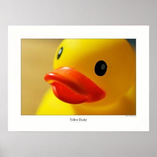 Ducky amarillo póster