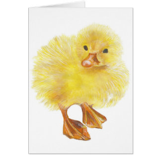 ducky , baby chick card