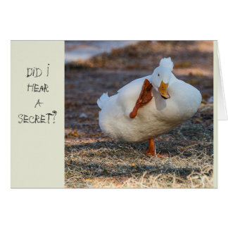 Ducky Birthday Card