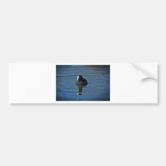 Ducky Bumper Sticker