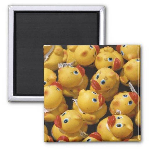 Ducky de goma - imán