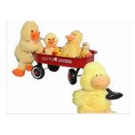Ducky Flyer Postcard