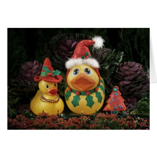 Ducky Holidays! Greeting Card