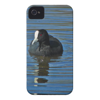 Ducky iPhone 4 Cover