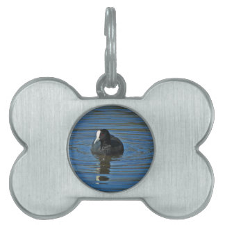 Ducky Pet Name Tag