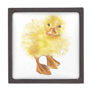 ducky polluelo del bebé cajas de regalo de calidad