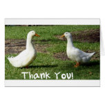 Ducky Thank You Card