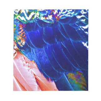 Dude Blue Peafowl Feather Notepad