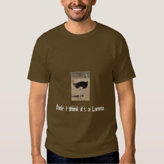 Dude, I think it's a Lamma. T-shirt