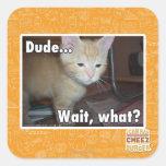 Dude Square Sticker