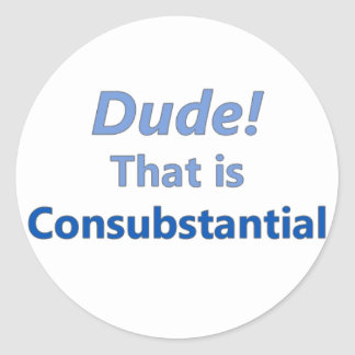 Dude! That is consubstantial Classic Round Sticker