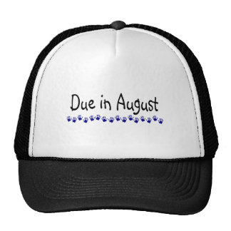 Due In August Trucker Hat
