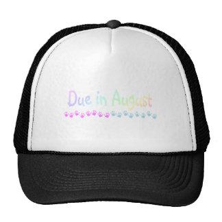 Due in August Light Trucker Hat
