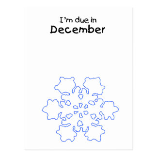 Due in December SnowFlake Post Cards