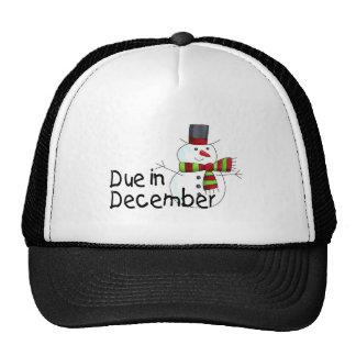 Due In December (Snowman) Trucker Hat