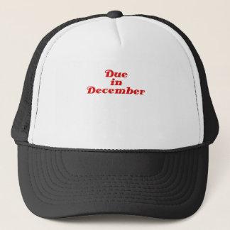 Due in December Trucker Hat