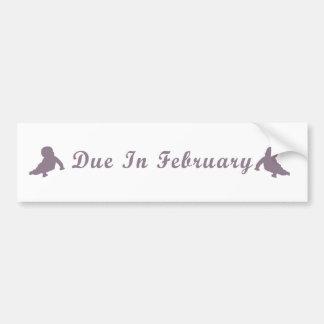 Due In February Bumper Sticker