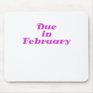 Due in February Mouse Pad