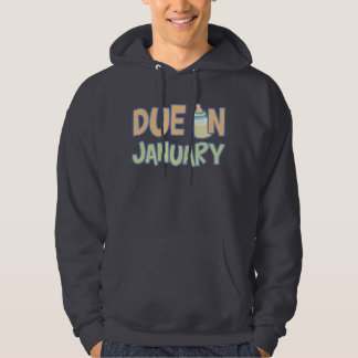 Due In January Hooded Pullover