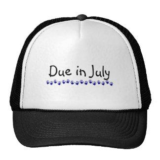 Due In July 2 Trucker Hat