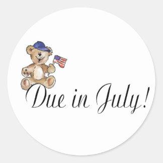 Due In July (Teddy) Round Sticker