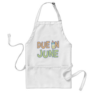 Due In June Adult Apron