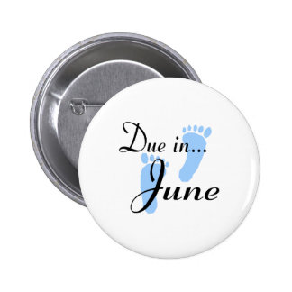 Due In June Buttons
